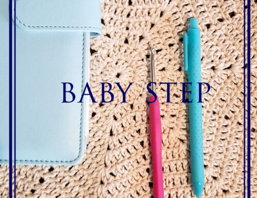 Baby Step di FlyLady